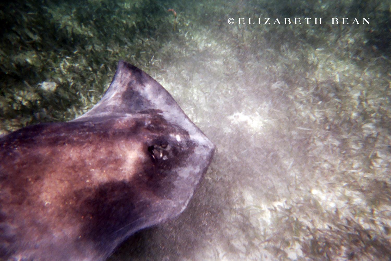 042907 Belize 60