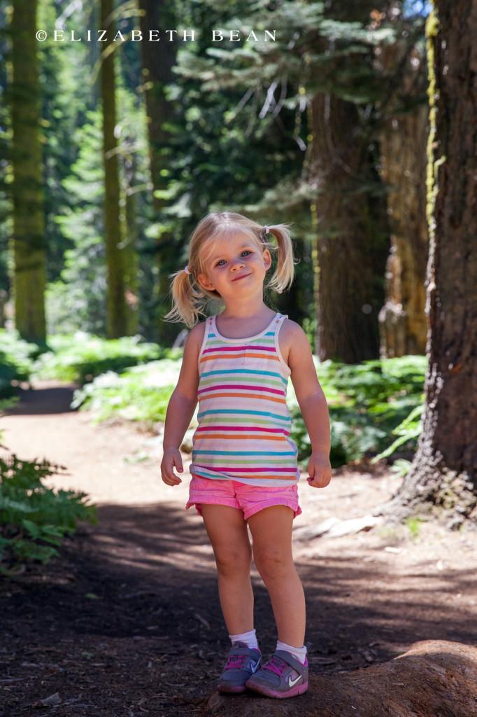 070214 Sequoia 55