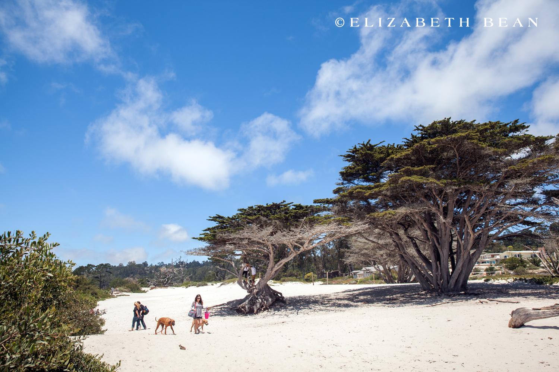 052813 Monterey 61