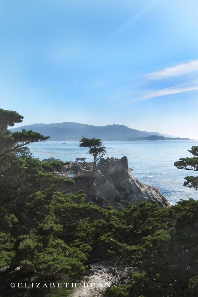 112303 Monterey 26