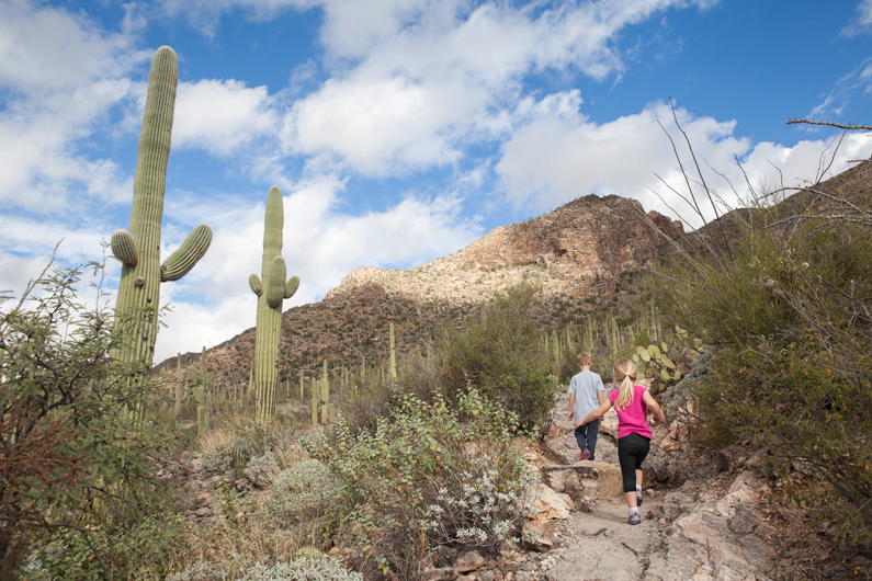 Pima Canyon Trail :: Tucson, Arizona