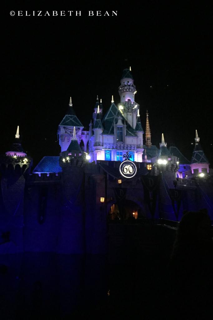 012816 Disneyland 28